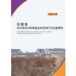 安徽省农村劳动力转移就业的空间行为过程研究