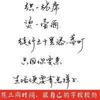 紫林轩凹槽练字帖成人行书行楷书练字板钢笔字帖硬笔魔幻消失练字入门三合一套装