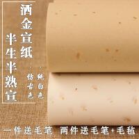 宣纸书法专用纸半生半熟四尺六尺对开仿古洒金宣纸书法作品纸