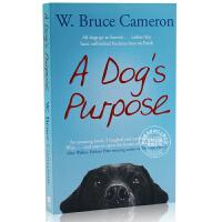 [现货]一条狗的使命 A Dog's Purpose 犬心所向 布鲁斯 卡梅隆 Bruce Cameron 同名电影小说 温情治愈 忠犬八公 导演新作 英国版