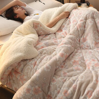 羊羔绒被子秋冬加厚双层棉被芯冬季全棉学生单人宿舍双人保暖冬被
