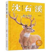 鹿王哈克 沈石溪动物小说大王 注音读本 沈石溪动物小说 一二三年级小学生课外阅读书 6-7-9-10-12岁青少年课外