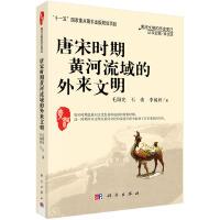 唐宋时期黄河流域的外来文明