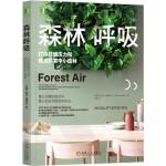 森林呼吸:打造舒缓压力和焦虑的家中小森林