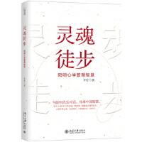 【正版新书】灵魂徒步――阳明心学管理智慧 李安 北京大学出版社 9787301295120