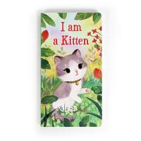 I am a Kitten我是一只小猫英文原版绘本儿童宝宝阅读撕不烂纸板书廖彩杏 我是一只小猫