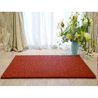 丝圈地垫门垫进门入户脚垫可裁剪定制pvc防滑垫门厅门口家用地毯