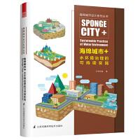 海绵城市+水环境治理的可持续实践(比海绵城市更进一步的水环境解决方案)
