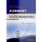 多元极端环境下输电线路风荷载及风效应