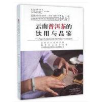 云南普洱茶的饮用与品鉴