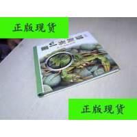 【二手旧书9成新】溪水里的动物 ・ 第一次发现丛书・放大镜系列