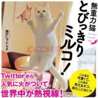 【日版】twitter超人气无重力猫 失重猫咪写真集 日本摄影集 现货