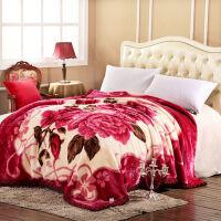 家纺毛毯被子冬天单人双人加厚双层拉舍尔盖毯冬季婚庆超柔保暖单双人绒毯子 200*240 12斤