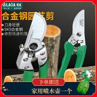 老A (LAOA) 园艺剪刀 省力园林绿化工具花剪