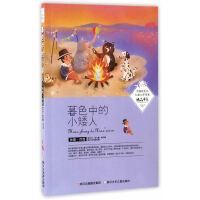 中国新生代儿童文学作家精品书系:暮色中的小矮人