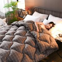 10斤被子冬被芯冬天加厚保暖学生宿舍单人双人空调冬季全棉被