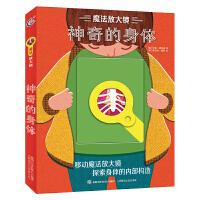 魔法放大镜・神奇的身体 6-9-12岁少儿科普绘本老师我们的身体大脑与感官课外亲子阅读书籍探索身体的内部构造童趣出版 9