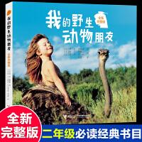 我的野生动物朋友正版一二三四五年级课外书必读小学生云南南海老师推荐阅读接力出版社非注音儿童百科全书科普书籍畅销童书