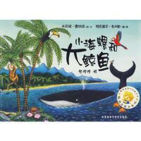 【正版HB】 聪明豆绘本系列第一辑:小海螺和大鲸鱼