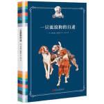 狗之物语:一只流浪狗的自述 (精装) 人民文学 理查德戴维斯著 E. M. 阿什绘 吕琴译