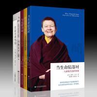 现货北京立品正版图书佩玛丘卓作品套装5册生命不再等待+飞跃+