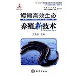 鳗鲡高效生态养殖新技术