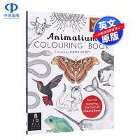 【欢迎来到博物馆系列】动物学填色书 Animalium 图画书 涂鸦着色书 儿童绘画 自然科普知识 科普 Jenny B