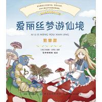 爱丽丝梦游仙境 中国纺织出版社