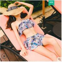 户外泳衣女两件套比基尼托聚拢温泉游泳衣分体裙式平角保守遮肚小胸钢
