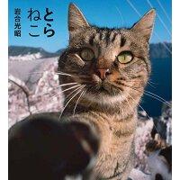 现货【深图日文】とらねこ虎猫 (IWAGO'S BOOK) 岩合光昭 猫猫 萌猫 �游镄凑� 动物写真 日本原版进口写真