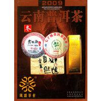2009云南普洱茶―冬