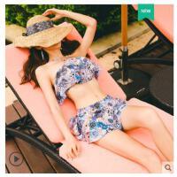 新款游泳衣女分体平角裙温泉比基尼式两件套小胸聚拢性感清新