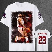 夏装篮球球星骑士詹姆斯詹皇小皇帝3D短袖T恤球衣詹姆斯球衣 XXXL(180