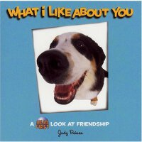 英文原版 What I Like About You