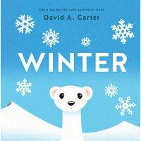 Winter: A Pop-Up Book 冬天:立体书 David Carter