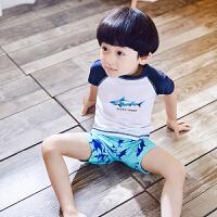 儿童泳衣原单韩版中大男童宝宝防晒分体泳装男孩速干温泉泳衣