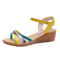 WARORWAR 法国新品YN38-2699-1夏季韩版坡跟女凉鞋