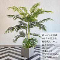 北欧家居室内天竺葵仿真植物盆栽摆件大型落地客厅餐厅绿植装饰品 +方形水泥盆