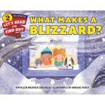 【预订】What Makes a Blizzard?