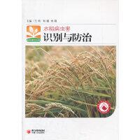 水稻病虫害识别与防治/新农村新生活书库