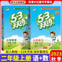 53天天练二年级下册语文数学部编版人教版 2020春二年级下53同步练习册试卷