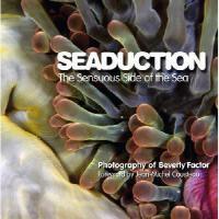 【预订】Seaduction: The Sensuous Side of the Sea