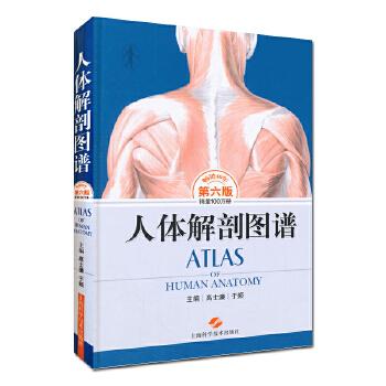正版 人体解剖图谱(第六版) 高士濂,于频 医学 基础医学 解剖学书 上海科学技术出版社