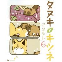 现货【深图日文】タヌキとキツネ 6 小狐狸和小狸猫 6 アタモト漫画 フロンティアワ�`クス
