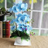 仿真蝴蝶兰花套装家居客厅绿植盆栽电视柜假花办公室装饰摆件 蓝色 蓝色3层