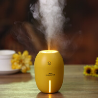 FGHGF 迷你USB空气加湿器学生宿舍办公室桌面静音车载香薰加湿冬季礼物