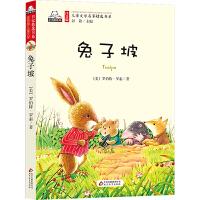 兔子坡 注音版儿童文学名家精选书系 小学生语文新课标必读丛书 一二三年级小学生课外阅读书籍 6-8-10-12岁儿童文学书籍名著