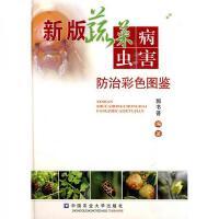 新型建筑模板实用技术【正版图书 绝版旧书】
