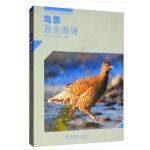 鸟类原色图谱/四川卧龙国家级自然保护区系列丛书