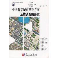 中国数字城市建设方案及推进战略研究